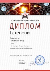 diploma176175